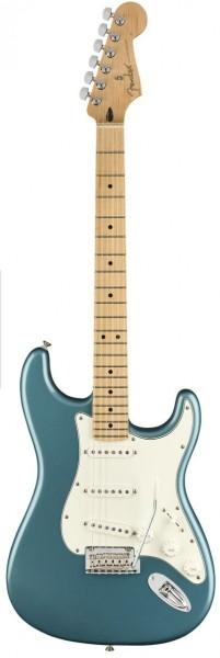 Fender Player Stratocaster® Maple Fingerboard TPL