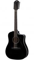 Taylor 250ce-BLK DLX 2020