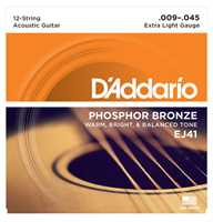 D'addario EJ41 009-045 12-String
