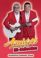 Amigos : Hit-Collection Songbook Klavier (Gesang/Gitarre)